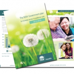 Palliative Care Report