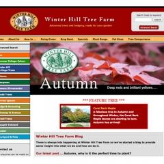 Winter Hill website